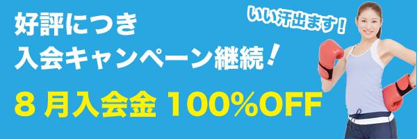 banner-2013-08